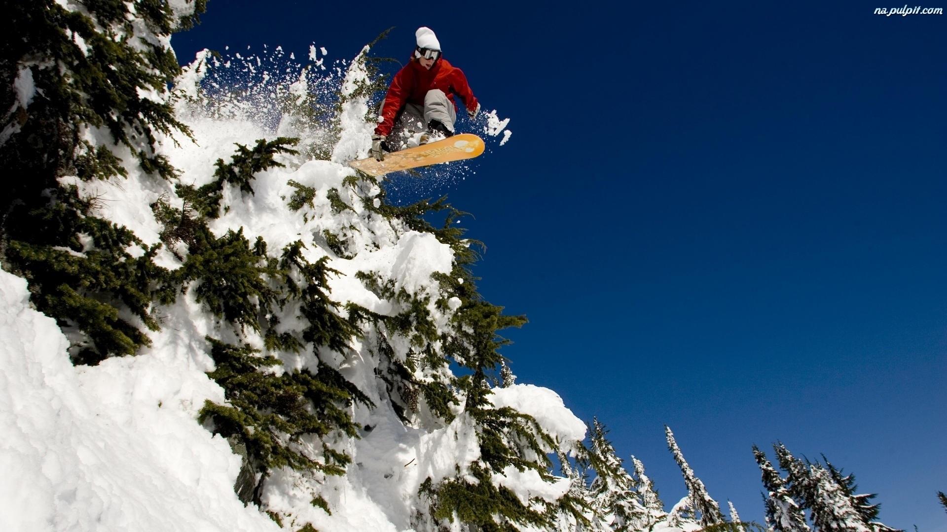 Choinki Snowboardzista Nieg Pulpit